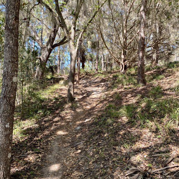 SWAMP 10k 30k 50k 100k Trail Race, Palm Coast, Florida