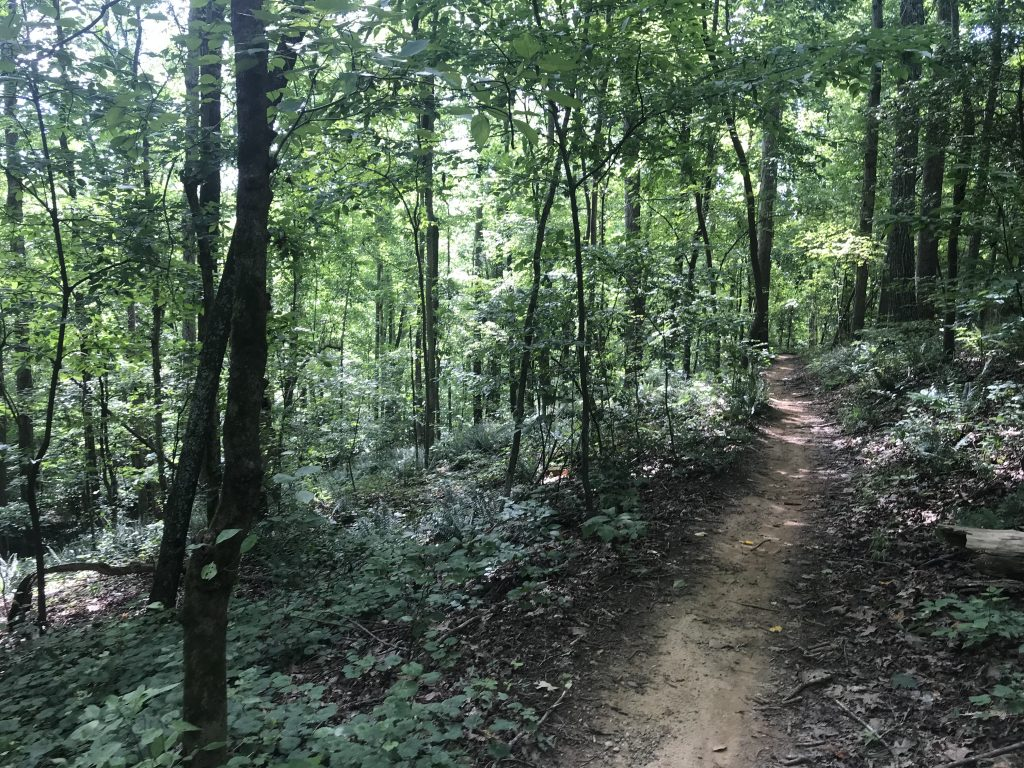Trails allow you to slow down and enjoy the scenery