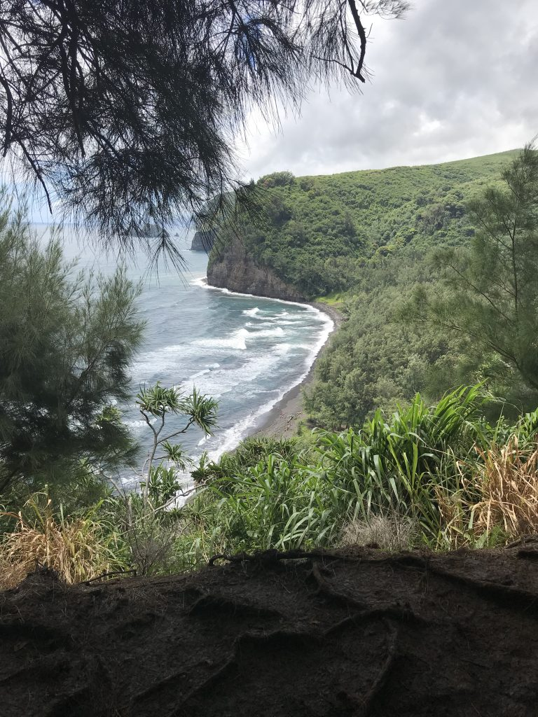 Views from a Hawaii trail